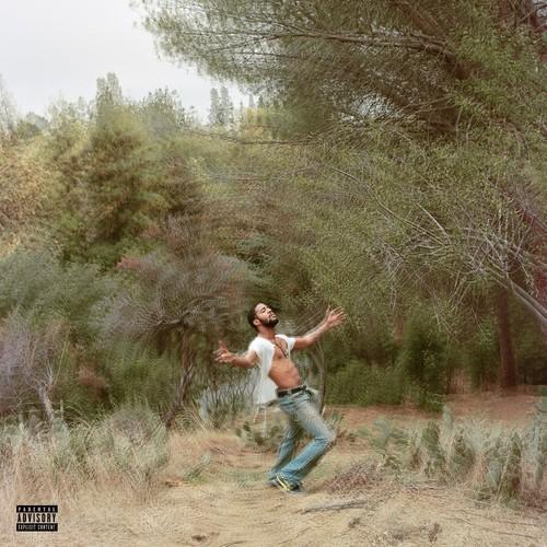 Albums That Slipped Through The Cracks: Speedin' Bullet 2 Heaven by KidCudi